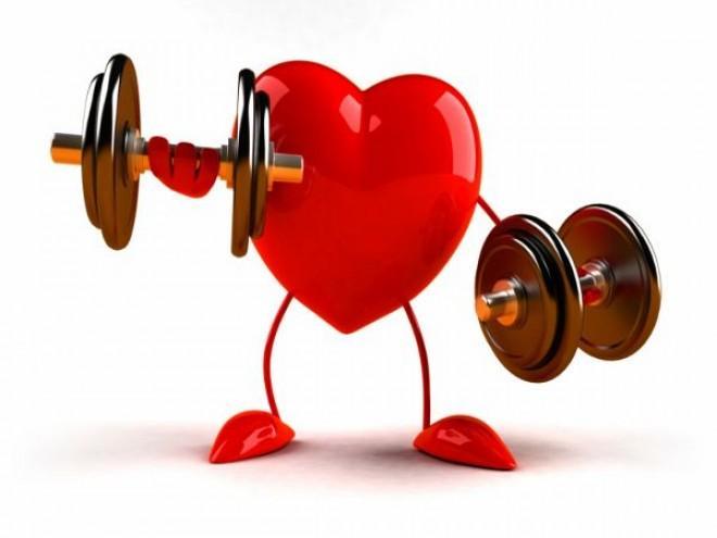 srce fitnes