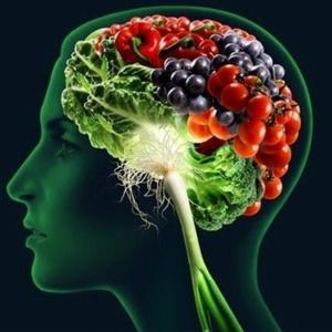 prehrana-mozgani