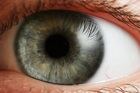 oko-oci-vid-okulistika